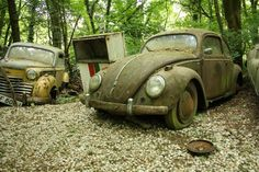 Dusseldorf-Erkrath The Vintage Supercars Rotting away in a Forest (and that's how the owner wants it)