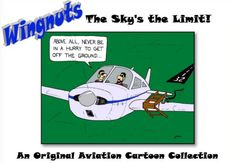 Wingnuts: The Sky's the Limit - Aviation Humor from Joel Mugglin