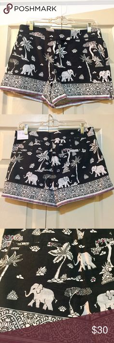 """Never worn Anne Taylor Loft shorts! The Riviera Short, elephant and Palm pattern shorts. 4"""" inseam. Never worn! LOFT Shorts Skorts"""