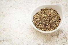 zhannadesign and cosmetic: 6 Skin Benefits from Hemp Seed Oil Most Filling Foods, Cannabis, Make Almond Milk, Hemp Milk, Dog Diet, Cbd Hemp Oil, Salad Ingredients, Hemp Seeds, Diet And Nutrition