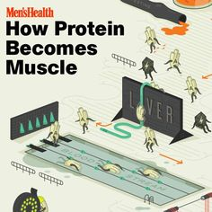 Learn the science behind #protein here: http://www.menshealth.com/nutrition/how-protein-becomes-muscle?cid=soc_pinterest_content-nutrition_july14_proteinbecomesmuscle