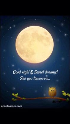 323 best good night, sweet dreams images in 2019 Good Night Friends, Good Night Wishes, Good Night Sweet Dreams, Good Night Moon, Good Night Image, Good Morning Good Night, Day For Night, Good Night Greetings, Good Night Messages