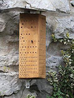 Nistblock mit Flachprofil auf gefaster Kante  webseite mit Tipps für Ausstattung, Aufstellung etc für Wildbienen-Hotels