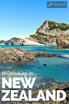 Hitchhiking New Zealand – Hidden Gems and Wild Seal Pups