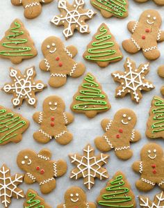 These soft gingerbread cookies are sweet, soft, and lightly spiced. This is the perfect cut-out cookie recipe, and will quickly become a family favorite for the holidays!  Welcome to Christmas Cookie season! I'm so excited to share with you all kinds of Christmas cookie inspiration, because this is the most wonderful time of the year