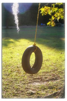 Swinging on our tire swing that hung from the Weeping Willow tree in our backyard