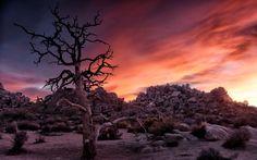 Photograph Hidden Valley Sunset, Joshua Tree