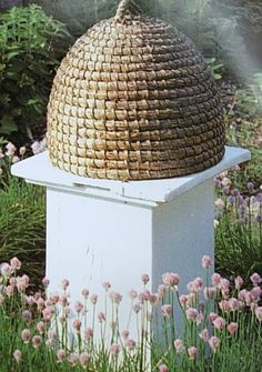 gorgeous!! think this skep is older... there is no opening.... openings allow others than bees to enter...my under standing is that the old ones sat on a stand or base and bees made entry from under the skep..... that way only the bees got in......