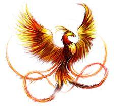 Эскизы татуировки феникс. Рисунки тату