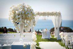 To the Bride and Groom: Tiffany Box Wedding Blog, Wedding Events, Destination Wedding, Wedding Ideas, Wedding Chair Decorations, Wedding Chairs, Tropical Floral Arrangements, Tiffany Box, Fantasy Wedding