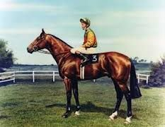Nijinsky. The only English triple crown winner in the past 75 years. He won 11 of 13 races finishing second in his 2 losses. Named European horse of the year, he became a very influential sire of many champions and classic winners. He is a son of Northern Dancer. Here is the link to a full article on http://thoroughbredancestry.com/?p=267 about the great Nijinsky.