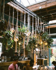 """713 Likes, 18 Comments - Sara Toufali (@saratoufali) on Instagram: """"always here ☝& always in awe of this macrame plant bb chandelier dream ✨"""""""
