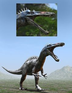 Suchomimus tenerensisDR   Animals for Daz Studio and Poser