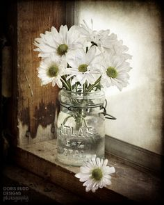 Daisies-- inexpensive & sweet