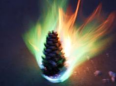 Colored Flame Pine Cones - these would be really cool in a campfire!