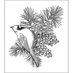 Heartfelt Creations 'Cardinal Pine Bough' Stamps - Overstock ...