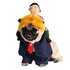 New Funny Dog Clothes Halloween Cosplay Suit With Wig Rider Costume For Cats Winter Clothing For Dogs Xmas Cat Outfit Pet Coat on Pet Supplies 9144 Halloween Suits, Halloween Cat, Halloween Cosplay, Halloween Parties, Halloween Christmas, Halloween Costumes, Birthday Parties, Donald Trump Dog, Funny Cats