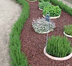 Here you& find 30 brilliant garden edging ideas, use them to add boundaries to certain area& to create a neat, modern look to your yard or property. Small Garden Edging Ideas, Small City Garden, Garden Borders, Garden Edge Border, Garden Ideas, Grass Edging, Edging Plants, Grands Pots, Pot Jardin