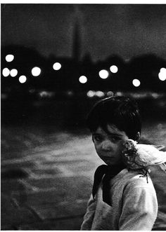 Child and the Dove, 1958 by Robert Doisneau