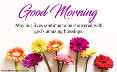 Good Morning Blessings Images Quotes for best wishes ever. Hearlty blessings to your loved ones, family members, kids. A blessing can change whole day in positive way. Good Morning Prayer, Morning Love Quotes, Good Morning Texts, Good Morning Inspirational Quotes, Morning Greetings Quotes, Morning Blessings, Good Morning Messages, Morning Prayers, Good Morning Wishes