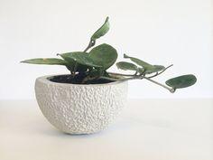 Pineapple Fruit Planter - Stone Pot - Decorative Bowl - Raw Grey ...