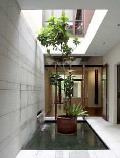 Interior Courtyard Garden Ideas-26-1 Kindesign