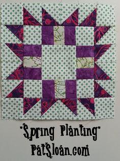 moda quilt along block 23--Pat Sloan Free Spring Planting block
