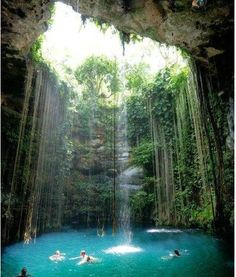 Natural swimming pond from Yucatán Mexico