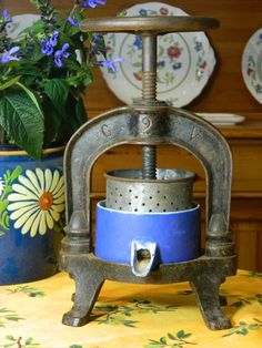 French Country Fruit Press RARE Blue Enamel Cup Circa Early 1900s