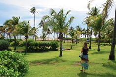 Taking a morning stroll along the famed Avenue of the Palms at Nisbet Plantation in Nevis, voted the Caribbean's no. 1 resort in the just-released 2011 Condé Nast Traveler Reader's Choice Awards.