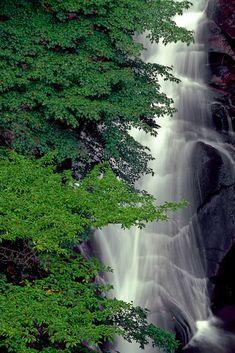 Sohren Falls, Nihonmatsu, Fukushima, Japan. ♥♥