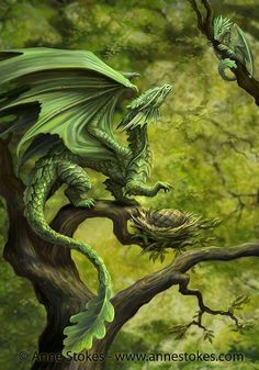 """""""Dragon Sultus"""" Forest Dragon Artwork by Anne Stokes"""
