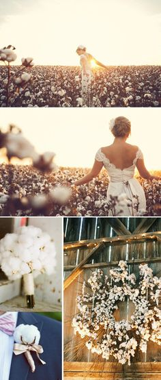 cotton themed wedding