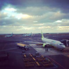 제주국제공항 Jeju International Airport (CJU)