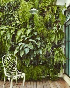 En el #post de hoy hablamos de los #jardines #verticales! Todo en la info del perfil #hacheintercalada In today's post we talk about vertical gardens!