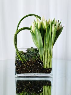 Fresh arrangement of all white tulips with succulents, rocks and leaf treatments