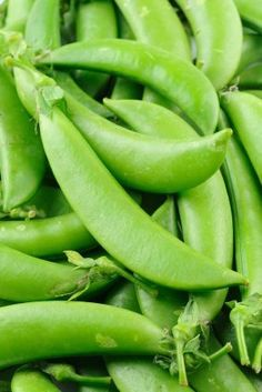 This is a guide about freezing snow peas (sugar, Chinese, or sugar snap peas). Freezing is a good way to preserve the overflow of your garden pea crop.