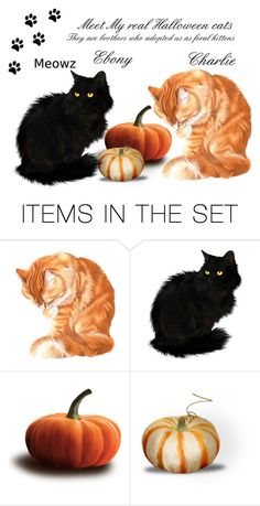 """The Cats who Own Me"" by sjlew ❤ liked on Polyvore featuring art"