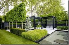 Love the pleached trees to frame the 'room' yet keep it from feeling too boxed-in.
