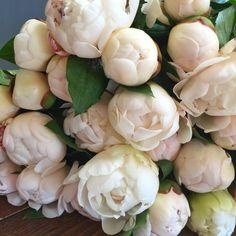 Bristol wedding florist The Rose Shed shares April seasonal spring flowers