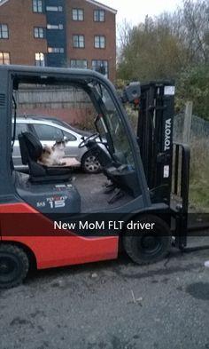 New MoM FLT driver #catoftheday