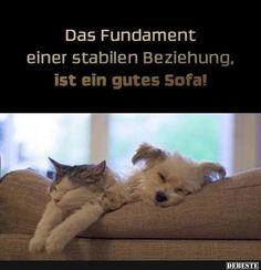 Das fundament einer stabilen Beziehung, ist ein gutes Sofa! | Lustige Bilder, Sprüche, Witze, echt lustig