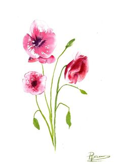 Buy Original Watercolor Poppies Painting, Watercolor by Olga Shefranov on Artfinder. Discover thousands of other original paintings, prints, sculptures and photography from independent artists.