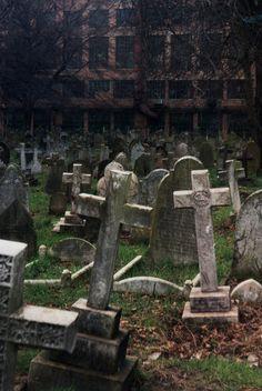 #Graveyard #Photo   #EternalBeautyBook