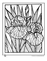 Image result for free quilting coloring pages