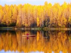Alaska in the fall. I CAN'T WAIT!!!! My favorite time of year. I have a feeling it's going to be gorgeous. by lindsay0