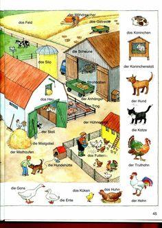 German Grammar, German Words, World Languages, Foreign Languages, Learn German, Learn English, German Resources, Germany Language, German Language Learning