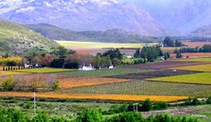 Hex River Valley Worcester Landscape Photos, Landscape Photography, Art Photography, Valley Landscape, Cape Town South Africa, Farm Houses, Worcester, Landscapes, Scenery