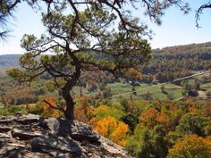 Jasper Arkansas and other places such as Mountain View Arkansas, Ozark, Fayetteville, etc have beautiful fall colors to see end of October to early November.
