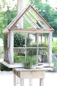 Little greenhouse made from salvaged windows